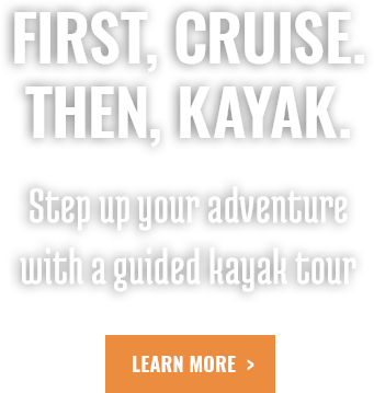 First, Cruise. Then, Kayak
